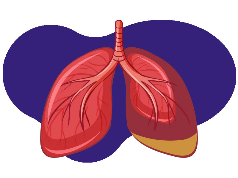 indoor air quality testing lung damage